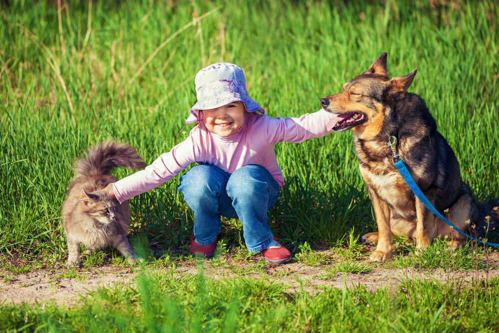 Little girl with animals - VIP Foundation
